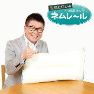 生島ヒロシの快眠健康枕ネムレール