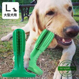 犬用品 ペット歯ブラシ 歯ブラシ デンタル 歯磨き 歯みがき 大型犬用 代金引換不可