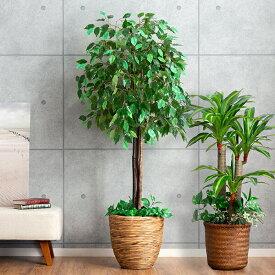 インテリアグリーン2点セット インテリアグリーン 光触媒 観葉植物 グリーン フェイクグリーン 人工観葉植物 おしゃれ 大型
