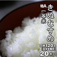 きぬむすめ米20キロ白米送料無料一等米食味ランク30年度産