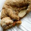 REDECKER レデッカー 猫が喜ぶ キャットブラシ 柔らか豚毛 猫用ブラシ&手入れ用リムーバーセット 猫 ブラシ 抜け毛 …
