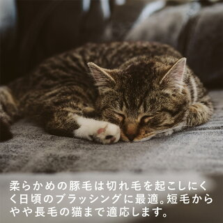 レデッカー猫が喜ぶキャットブラシ柔らか豚毛猫用ブラシ&手入れ用リムーバーセット猫ブラシ抜け毛換毛ねこ毛ペットブラッシングマッサージくしREDECER