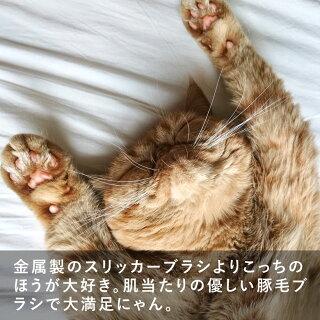 【送料240円】REDECKERレデッカーキャットブラシ猫用ねこ毛ペット換毛ブラッシングマッサージくし