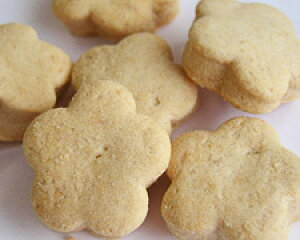 しょうが/ショウガ/生姜/卵・牛乳・添加物不使用 無添加クッキー/バラエティー//卵アレルギー/乳製品/アトピー/アレルギー/【RCP】