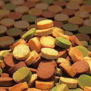【訳あり】豆乳おからクッキーFour Zero(4種)1kg【送料無料・食品につき返品不可】