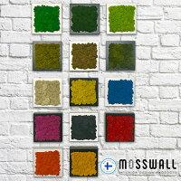 スカンディアモス/モスウォール/フラワーアート/インテリアグリーン/グリーンウォール/mosswall