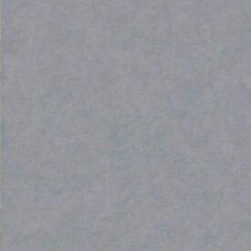 『撮影照明・撮影機材専門店』ライトグラフィカ 撮影用背景紙バックペーパー #58 スレートグレー 0.9×5.5m○写真撮影背景 紙バック スタジオ バックシート 背景布 背景紙 商品撮影 背景布 撮影用 撮影 バックペーパー撮影 照明 セット○