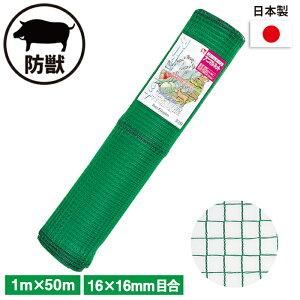 アニマルネット (緑) 1×50m ガーデニング 園芸 農具 農業 工具 道具 金星 キンボシ