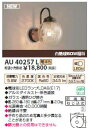 【15,000円以上送料無料(北海道・沖縄・離島を除く)】コイズミ照明 LEDポーチ灯 AU40257L