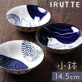小鉢 フルーツボウル 北欧 日本製 イルッテ 小鉢 6802 ギフト プレゼント 贈り物
