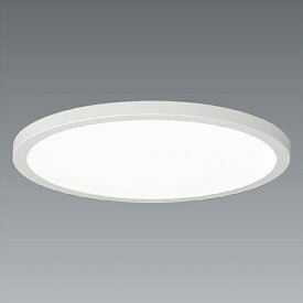 ENDO 遠藤照明(V) LED調光調色シーリングライト ERG5496WB