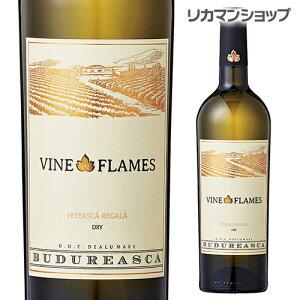 ヴァイン イン フレイム フェテアスカ レガーラ  ヴィル ブドゥレアスカ 750ml ルーマニア  辛口 白ワイン  長S
