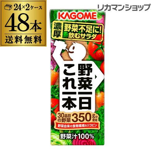 カゴメ 野菜一日これ一本 200ml 48本 送料無料 2ケース 紙パック 野菜ジュース 1本あたり88円 長S