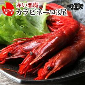 送料無料 海老バルorb 高級食材 「赤い悪魔」 カラビネーロ×3尾 海老 エビ クール代込 産地直送 orb (産直)