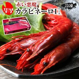 送料無料 海老バルorb 高級食材 「赤い悪魔」カラビネーロ×10~12尾 1ケース 海老 エビ クール代込 産地直送 orb (産直)