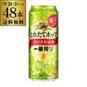 キャッシュレス5%還元対象品キリン 一番搾り とれたてホップ生ビール 500ml×48缶 2ケース送料無料KIRIN いちばんしぼ…