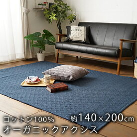 HOME RUG(ホームラグ) スミノエ オーガニックアクシス 約140×200cm(Sサイズ/約1.5畳相当) ネイビー