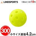 穴あき練習ボール (小) 300球セット