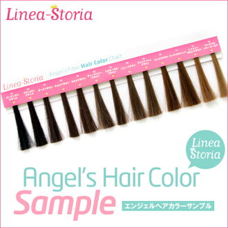 Color sample Hair color Chart wig-color samples and 1 Yen ★ フルウィッグ half wig bangs wig ponytail bun wig of course use! LSRV