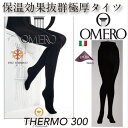 Thermo300 6