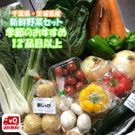 千葉県産 ・ 茨城県産 旬 詰め合わせ 産直 野菜 12品目以上 新鮮 採れたて 野菜セット 送料無料 (一部地域は別途送料がかかります)