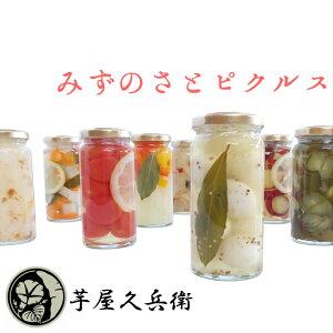 みずのさとピクルス pickles 酢漬け 漬物 ギフト 贈答用