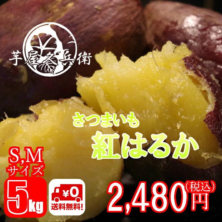茨城県産 紅はるか さつまいも S,Mサイズ 5kg 送料無料