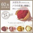 産地直送バラの花束60本(赤・ピンク・白・黄オレンジ)柳井ダイヤモンドローズ