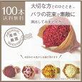 産地直送バラの花束100本(赤・ピンク・白・黄オレンジ)柳井ダイヤモンドローズ