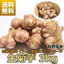 [予約]生 菊芋 キクイモ 3kg 土付き 日持ちが良い イヌリン 長野県産 食物繊維 スーパーフード 血糖値 中性脂肪 栄養素