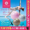 LinoMirai(リノミライ)フィットネスボール・バランスボール 55cm【送料無料】耐荷重300kg・ノンバースト仕様で安心 …