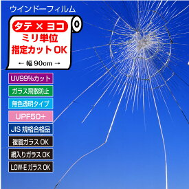 ぴったりカットミリ単位オーダーカット台風・防災対策ガラスの飛散防止フィルムUV99%カットクリアタイプ厚手100ミクロンJIS規格合格品HGS10【日本製】