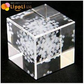3Dカバラ パドマ キューブ