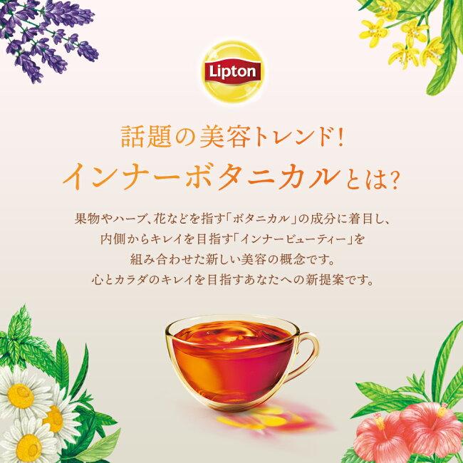 リプトン紅茶ブランド紅茶ボタニックティーピュアクレンズティーバッグ7袋Lipton