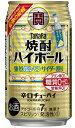 【送料無料】宝 焼酎ハイボール 強烈塩レモンサイダー割り 350ml×2ケース【北海道・沖縄県・東北・四国・九州地方は…