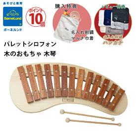 ボーネルンド パレットシロフォン 購入特典 名入れ刺繍 マルチ 巾着 お名前 刺繍 木のおもちゃ 木琴 楽器 シロフォン Bornelund 日本正規品