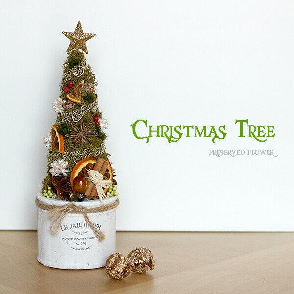 クリスマスツリー クリスマスス クリスマス クリスマスプレゼント プレゼント 贈り物 プリザーブドフラワー 置物 インテリア12月