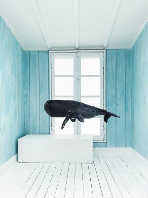 あす楽!クジラクッション/抱き枕【Lサイズ120cm】whalepillow【枕クッション抱きまくらぬいぐるみアニマルマッコウクジラプレゼント結婚祝いインテリア】