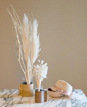 【ビッグテールリードホワイト】ドライフラワーインテリアボタニカル花飾りテーブル装花ディスプレイデコレーションonoenあす楽リトルレモネード