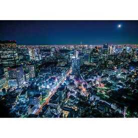 お風呂ポスター 東京の夜とスカイツリー B1(103×72.8cm) 長期固定タイプ(吸着素材)