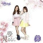 [送料無料]代引不可新品AKB48チームサプライズ夢を見るなら一般発売Ver.(生写真3枚封入)CD+DVD