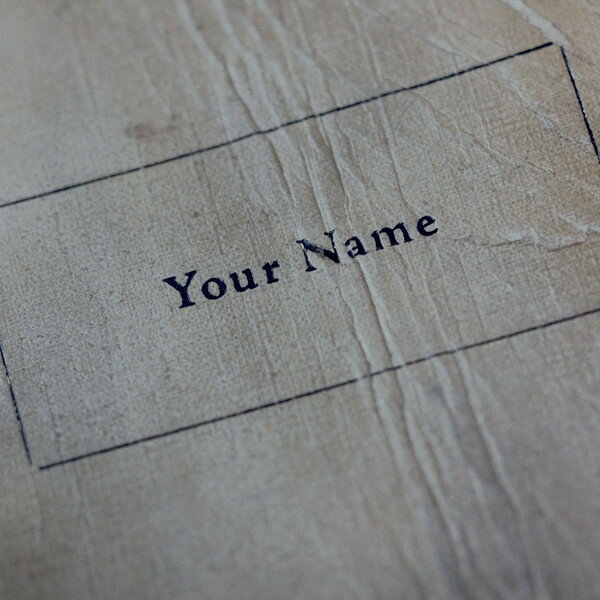 君の名は。 (初回限定盤 CD+DVD+BOOK) RADWIMPS
