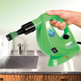 ハンディ スチームクリーナー 8点セット H2O FX デラックスセット グリーン レッド スチーマー 掃除 年末 大掃除 グッズ 軽量 コンパクト