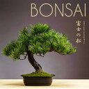 お手入れ不要 アレンジ盆栽 富士の松 和室 床の間 飾り インテリア 人工植物 盆栽 人工 光触媒 フェイクグリーン 人工…