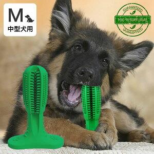 代金引換不可 犬用歯ブラシ 犬 歯磨き 歯みがき デンタルケア おもちゃ Mサイズ 中型犬用