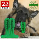 代金引換不可 犬用歯ブラシ 犬 歯磨き 歯みがき デンタルケア おもちゃ Mサイズ 中型犬用 2個組