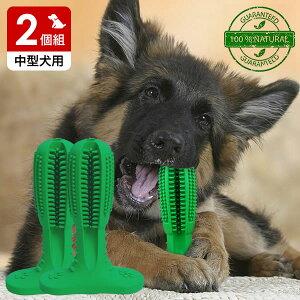 犬用歯ブラシ 犬 歯磨き 歯みがき デンタルケア おもちゃ Mサイズ 中型犬用 2個組 代金引換不可