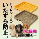 【送料無料】【しつけ用メッシュトレー レギュラー】トイレマット 犬用 トイレトレー レギュラーサイズ トイレ用品 …
