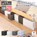 収納ケース プラスチック 引き出し 日本製【プラストベーシックFR1701】幅17cm 奥行45cm 1段 すきま収納 スリム ほこ…