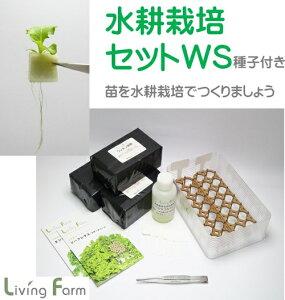 水耕栽培 育苗セットWS 種付き